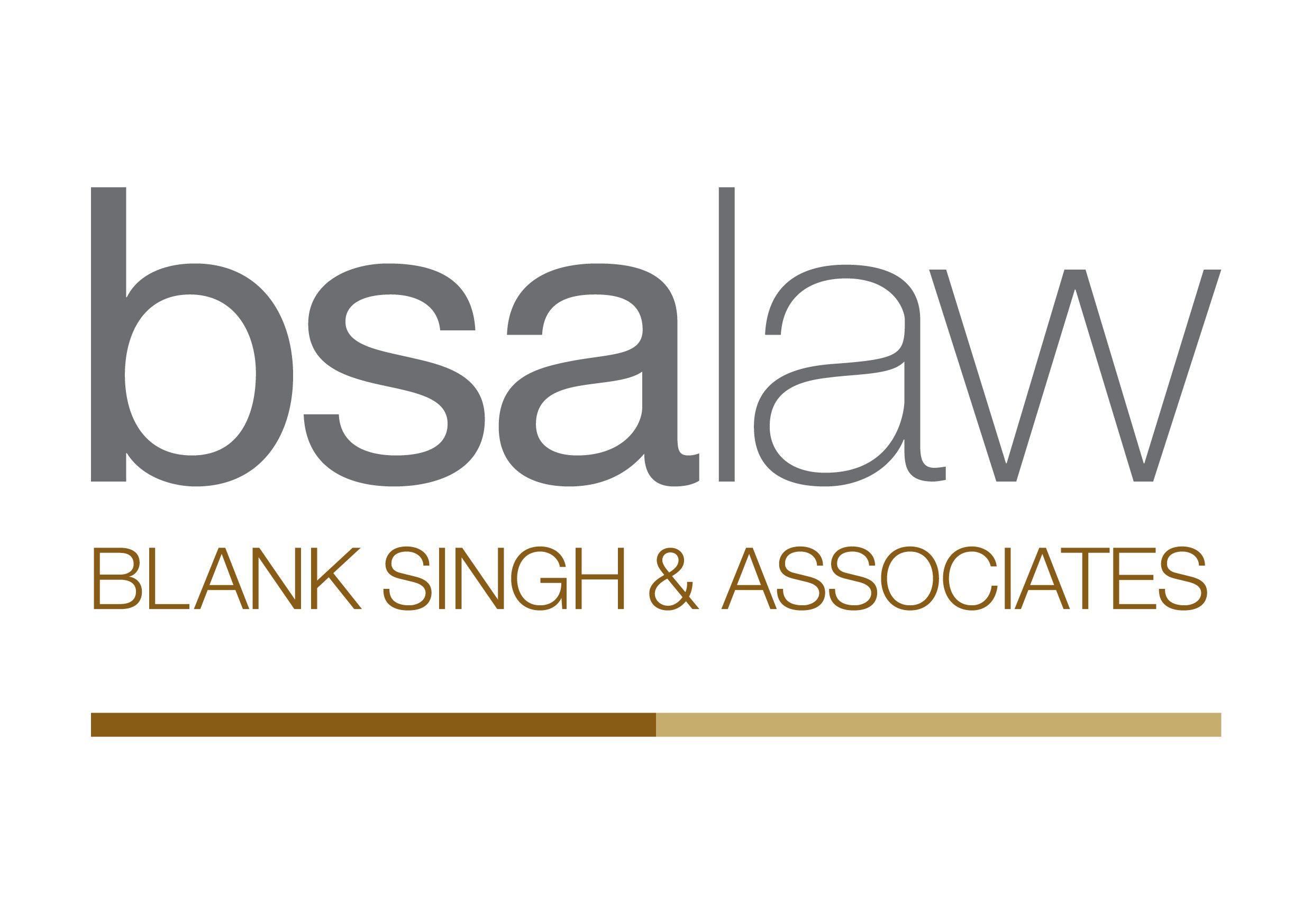 BSA law logo